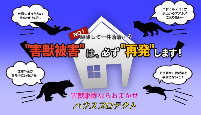 害獣駆除ハウスプロテクト-アイキャッチ